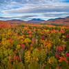 Fall Colors, Adirondacks