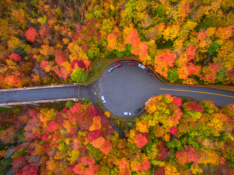 Autumn from Sky