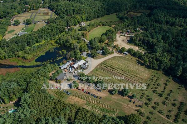 Box Mill Farm