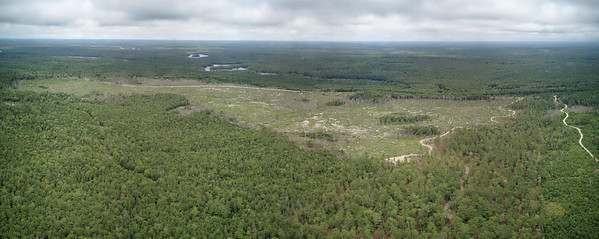 Aerial very large clearcut clear cut logging site along highway 8 with Medway Lakes Wilderness Area in background Nova Scotia