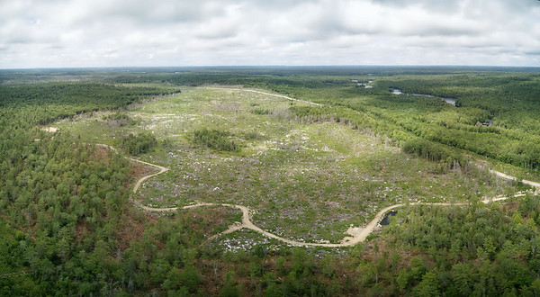 Very large clearcut cleat cut logging area adjacent to highway and Medway Lakes Wilderness Area Nova Scotia Aerial