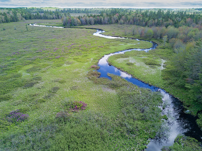 Aerial Big Kelly stillwater , winding river and wild rhododendrons in Nova Scotia