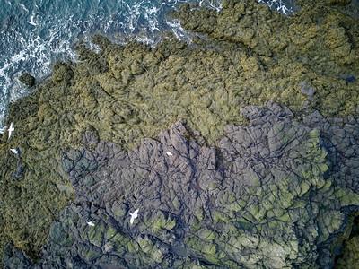 Aerial basalt rock shoreline Brier Island Nova Scotia