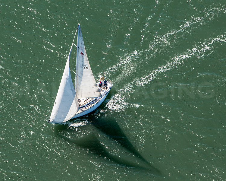 San Francisco sailboat.  7740