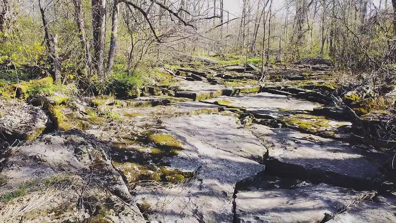 Walking the Creek Bed