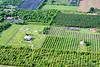 Farms in Homestead