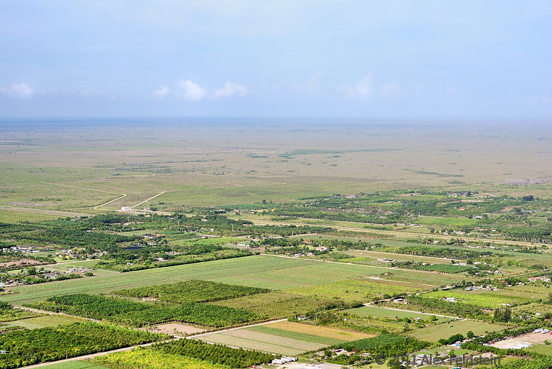 Farming on the edge of the Everglades