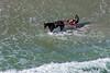 MIP AERIAL HORSE IN SURF YORK ME-5026
