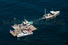 MIP AERIAL LOBSTER BOAT RACES BOOTHBAY HARBOR MAINE-7332
