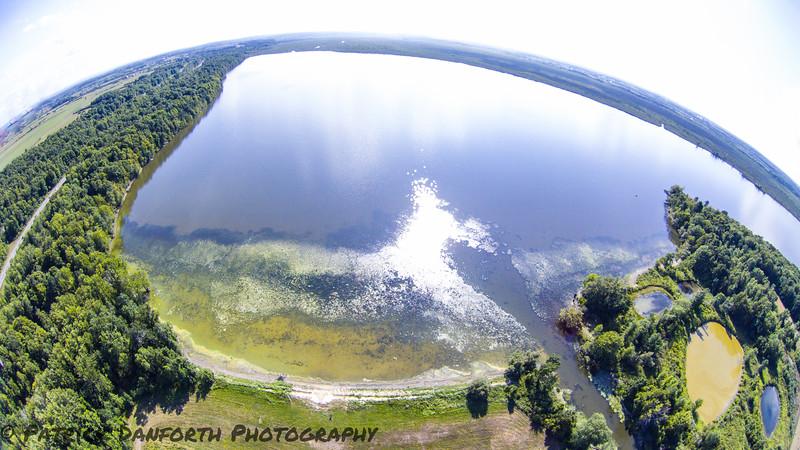 Perch Lake 2016
