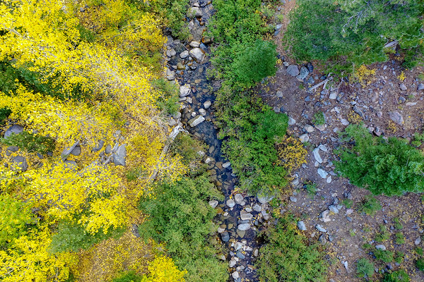 Deadman Creek Morning Fall Colors Aerial - Sonora Pass-3