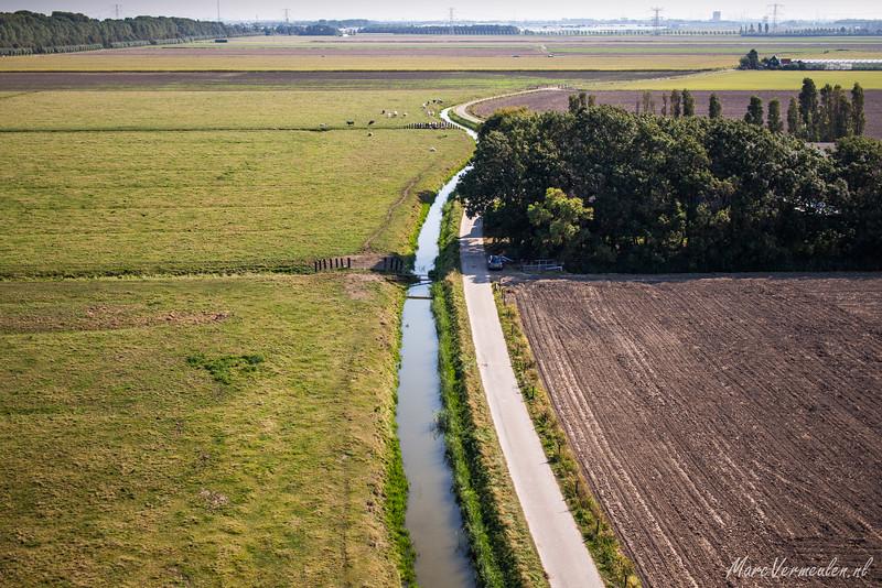 """The """"Bonnen"""" in Hoek van Holland"""