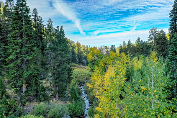 Deadman Creek Morning Fall Colors Aerial - Sonora Pass-2