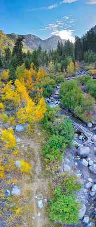 Deadman Creek Morning Fall Colors Panorama Aerial - Sonora Pass-2