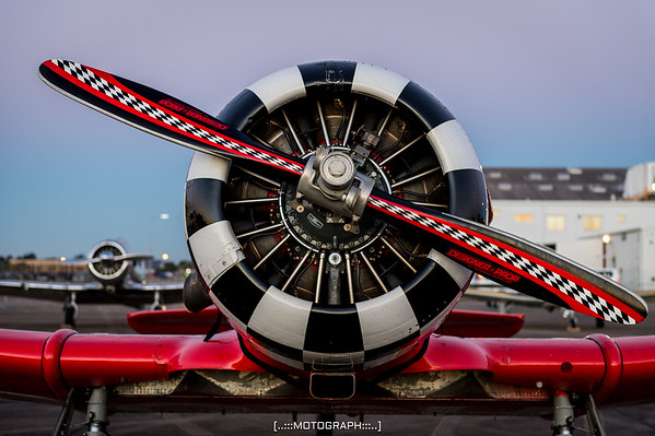 The business end of an AT-6 Texan flown by the Aeroshell Aerobatic Team