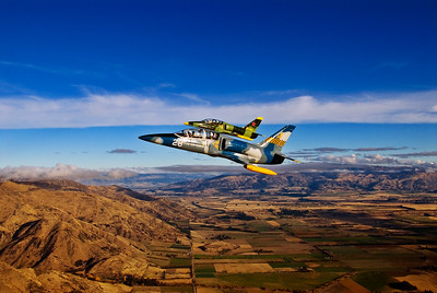 Albatros over Wanaka
