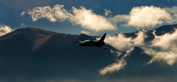 Albatros Over Wanaka (II)