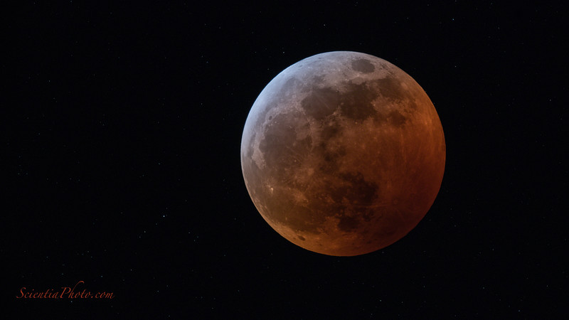 Lunar Eclipse of January 21, 2019