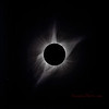 The Corona, Solar Prominences and Two Stars