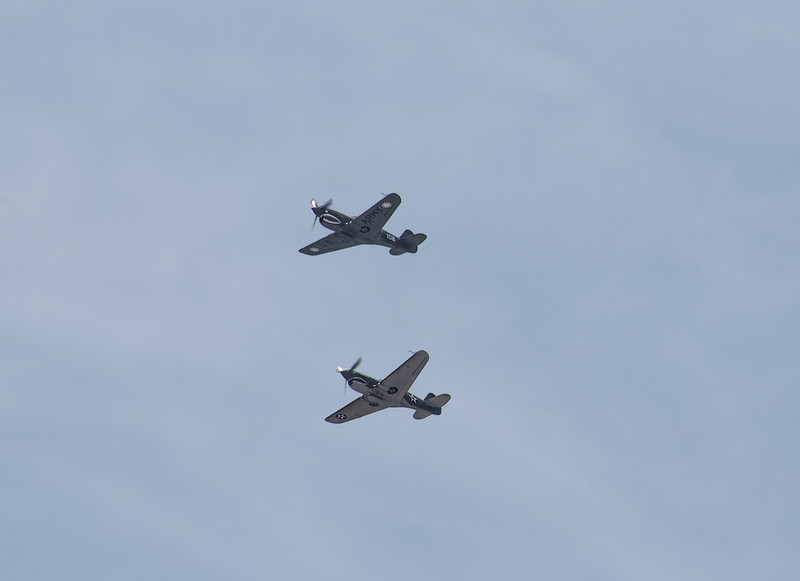 Two P-40 Warhawks - the 3rd Most Produced Fighter