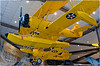"""Naval Aircraft Factory  N3N """"Yellow Peril"""" Floatplane and Conventional  Configuration"""
