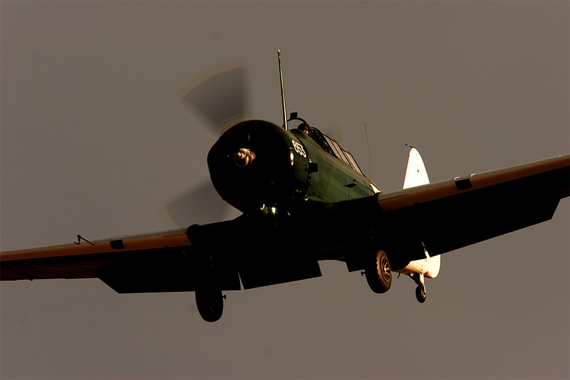 Late afternoon sun paints the Wirraway.