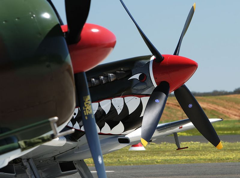 Two red noses. Matt Denning's Boomerang and TAM's Spitfire.