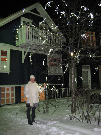 Tree lights in Iceland