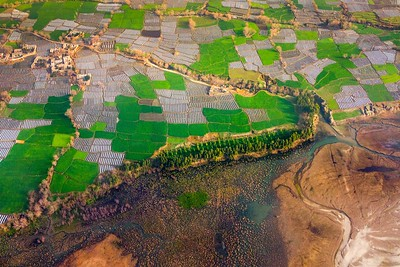 Kabul River and Green Crops