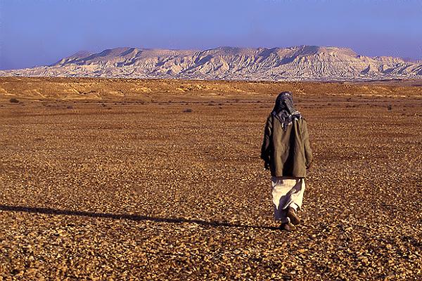 Bedouin in the Desert.jpg