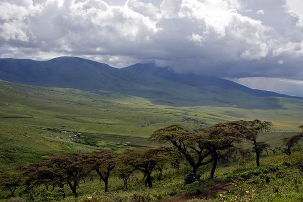 שמורת נגורונגורו   Ngorongoro Reserve