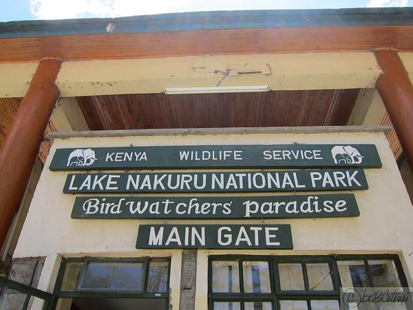 Urban Kenya
