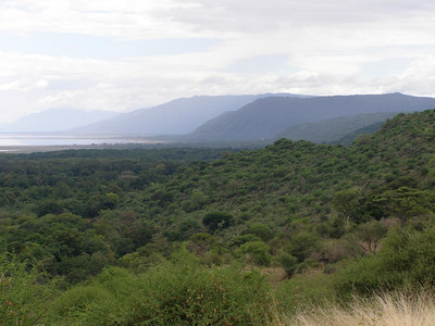 On the way to Ngorongoro Crater