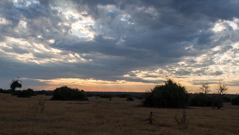 Chobe at Dawn