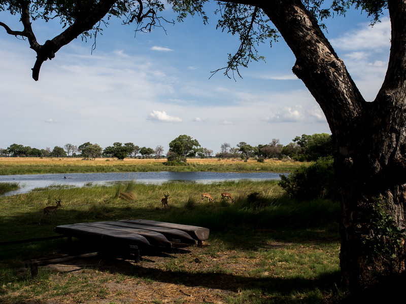 Xaranna Camp