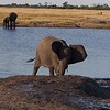 Hwange National Park - Click on the camera icon in the lower left of the picture for a video .