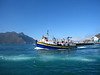 The next day I headed south along the scenic coastal route, making a stop in Hout Bay, a thriving fishing harbor.