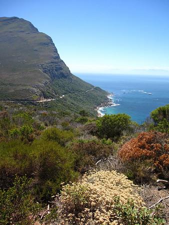 Africa February 2009