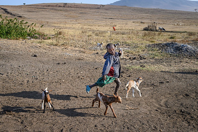Young Maasai and his goats