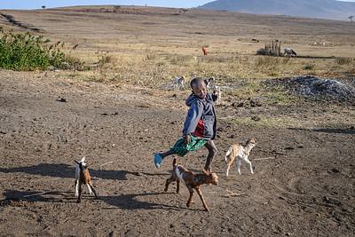 Young Maasai and his goats