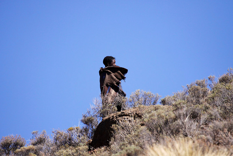 Basotho herder, Lesotho<br /> Aug. 6, 2009<br /> ©Peter Candido All Rights Reserved