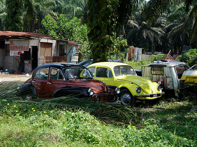 Morris 1000 and Volkswagen Beetle in Malaysia