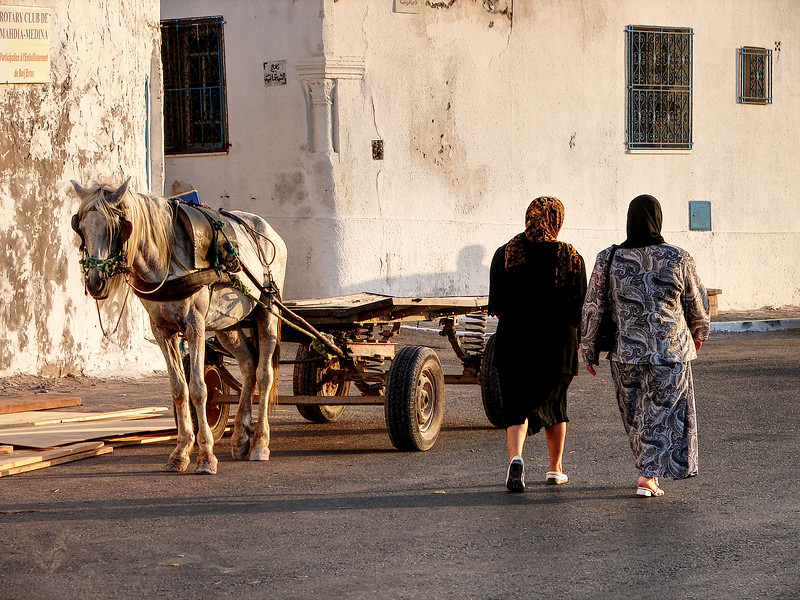 Horse and Cart in Tunisia