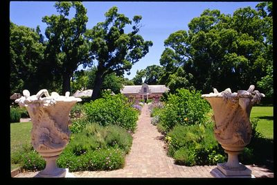 Groot Constantia wine estate near Stellenbosch