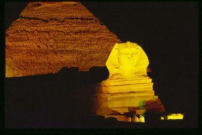 Illuminated Spinx and Pyramid