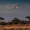 Mt. Kilimanjaro, 19,341 ft.