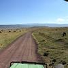 center of Ngorongoro Crater