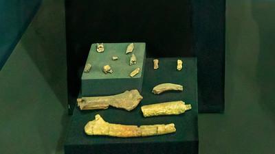 Fossilien des ARDIPITHECUS KADABBA