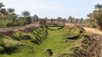 Oasenwirtschaft in Kerma, Sudan