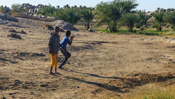 Oasenwirtschaft in Tumbus, Sudan